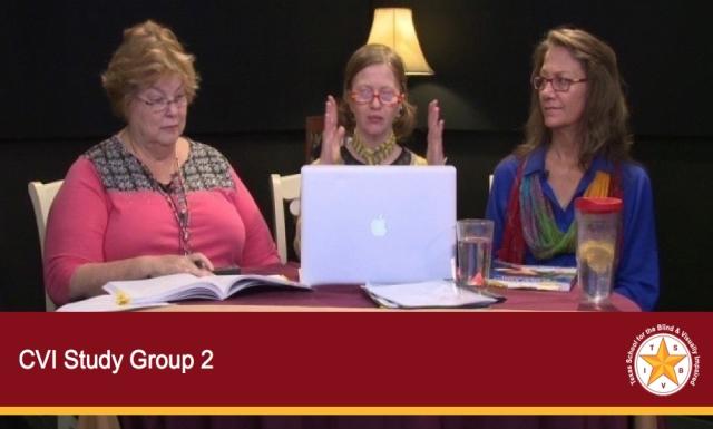 CVI Study Group 2