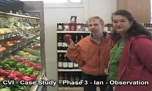 CVI: Case Study - Phase 3 - Ian - Observation
